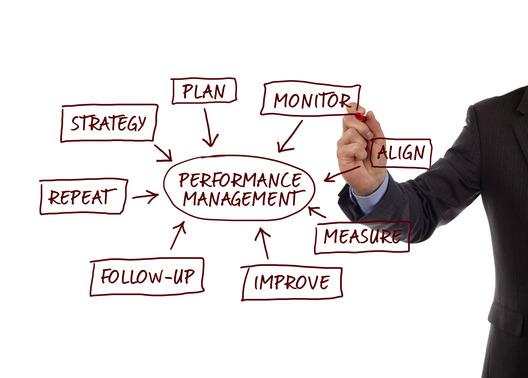 Performance management process diagram