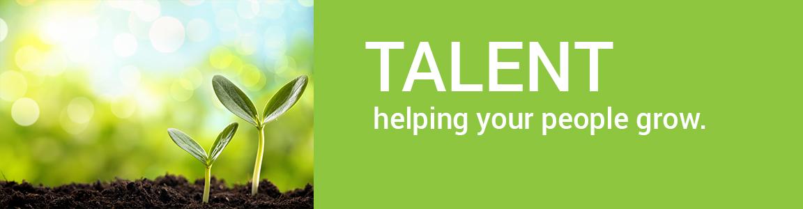 Triple three solutions Talent management development